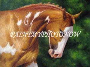 Painted horse portrait
