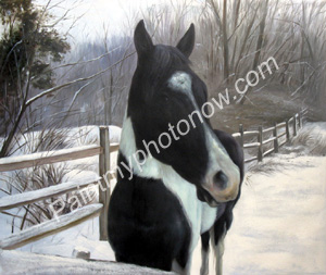 Horse Photos to Horse Paintings