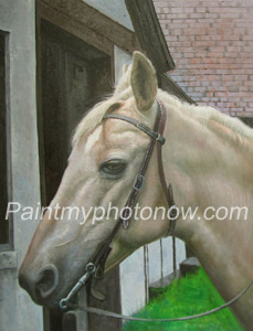 Horse Photographs to Paintings