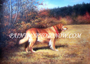 Pet Paintings from Photos