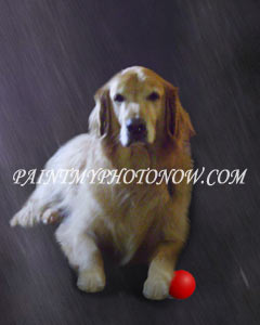 Dog Photo to Painting
